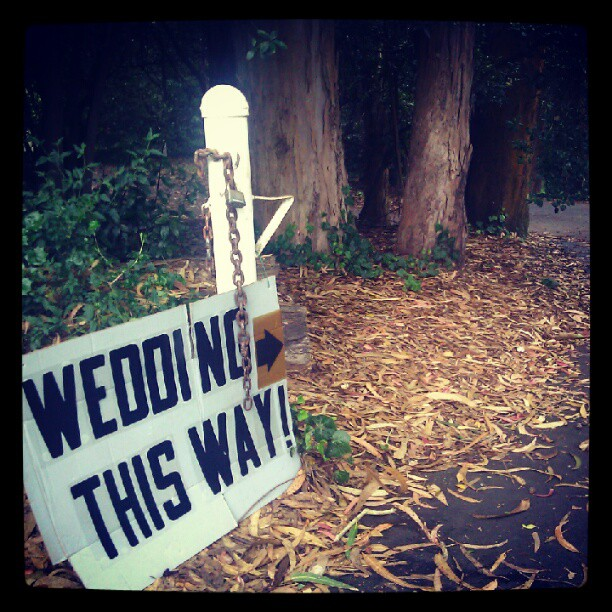 "A white sign with bold black letters saying ""Wedding this way"" and a gold arrow, tied to a white metal post at the entrance to a wooded grove. The ground is covered with yellow leaves."
